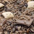 Stock Photo: Chocolate pieces and coffee beans