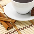 Cup of coffee with chocolate and cinnamon — Stock Photo