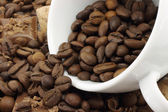 White cup and coffee beans — Stock Photo