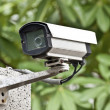 Security camera — Stock Photo #10035865