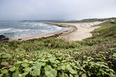 Bela praia de areia branca — Fotografia Stock