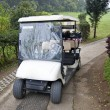 Tropical Golf Cart — Stock Photo