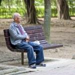 Grandfather portrait in park — Stock Photo