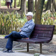 Grandfather portrait in park — Stock Photo