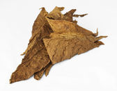 Dried tobacco leaves — Stock Photo