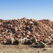 Stock Photo: Landfill for disposal of construction waste