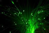 Optiska fibrer — Stockfoto