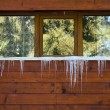 Stock Photo: Icicles on window