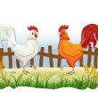 Two cocks in country side outdoor scene with fence — Stock Vector