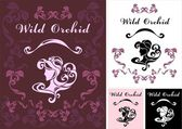 Wild Orchid — Stock Vector