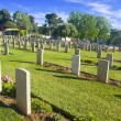 Tombstone rows — Stock Photo