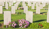 Lapidi in un cimitero — Foto Stock