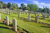 廃棄 (tombstone) の行 — ストック写真
