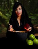 Witch from a fairy tale of Snow White — Stock Photo