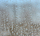 Water droplets on windows glass. — Stock Photo