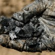 Stock Photo: Hand in gloves holding charcoal