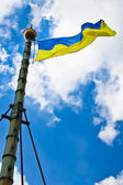 Flag of Ukraine waving in the wind — Stockfoto