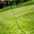 Flag and hole on golf field — Stock Photo