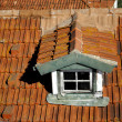 Stock Photo: Aging roof