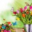 Stock Photo: Butterflies on blossoms