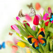 Butterflies on blossoms — Stock Photo #10496837