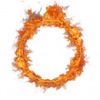 Fire ring — Stock Photo #8240507