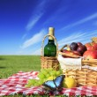 Picnic — Stock Photo #8386004