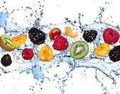 Fruta fresca — Foto de Stock