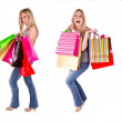 Girl shopping collection — Stock Photo #8859943