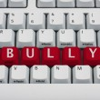 Bullying on the Internet — Stock Photo
