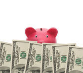Watching your money — Stock Photo