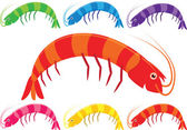 Vector cartoon prawns or shrimp in a variety of bright colours on a white background. — Stock Vector
