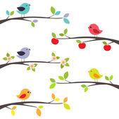 Pájaros en las ramas — Vector de stock