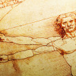 Vitruvian Man — Stock Photo #10263061