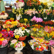 Florist shop — Stock Photo