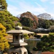 Japanese garden — Stock Photo #9197071