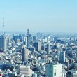 Tokyo skyline - Stock Photo