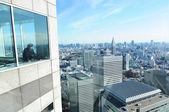 Tokyo panorama — Stock Photo