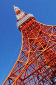 Tour de Tokyo — Photo