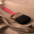 Royalty-Free Stock Photo: Old brush with red cape.