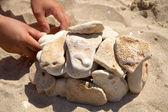 Kameny na písek — Stock fotografie