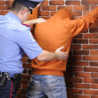 Stock Photo: Police officer searches detained suspect