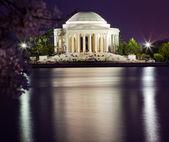 Jefferson Memorial Cherry Blossoms Tridal Basin Evening — Stock Photo