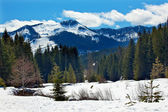 Gold creek monte hyak primavera nieve snoqualme pasar washington — Foto de Stock