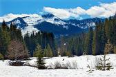 Gold creek mount hyak frühling schnee snoqualme übergeben washington — Stockfoto