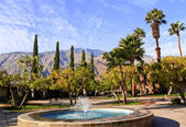 Fan Palms Trees Blue Fountain Palm Springs California — Stock Photo