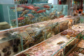 Seafood in tank — Stockfoto