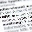 Definition of audit — Stockfoto