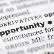 Royalty-Free Stock Photo: Definition of opportunity