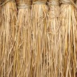 Background of straw — Stock Photo #8873417